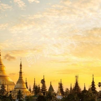 缅甸仰光大金塔
